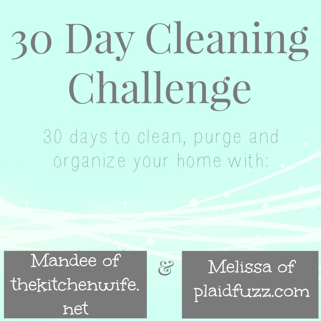 cleaningchallenge