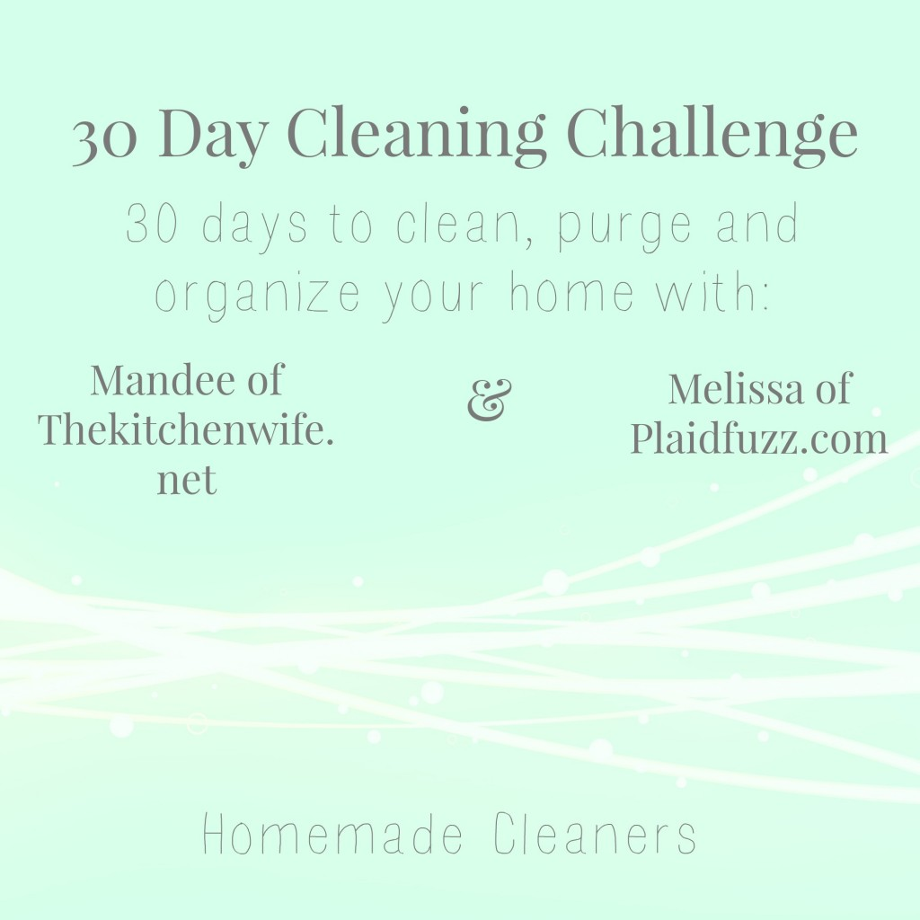cleaningchallenge3