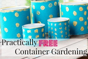 Practically Free Container Gardening