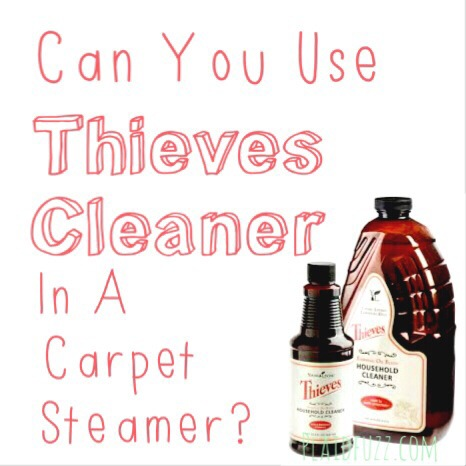 Can You Use Thieves Cleaner In A Carpet Steamer?