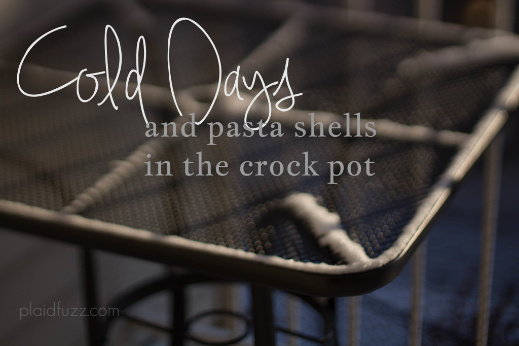 Cold Days and pasta shells in the crock pot