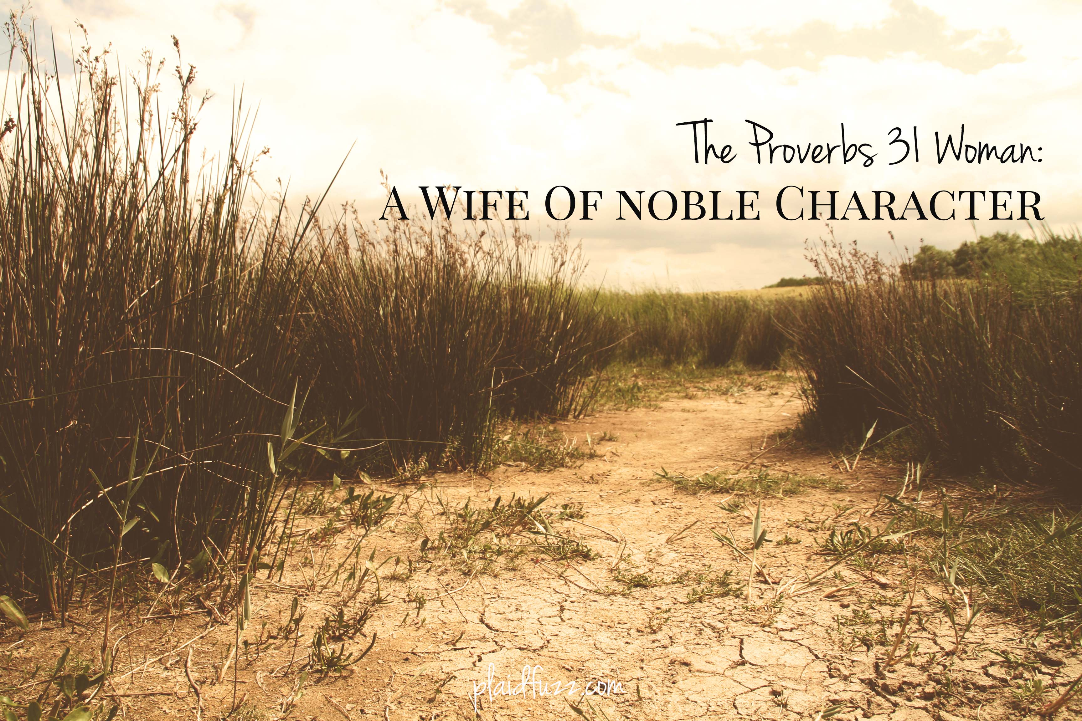 The Proverbs 31 Woman: A Wife Of Noble Character