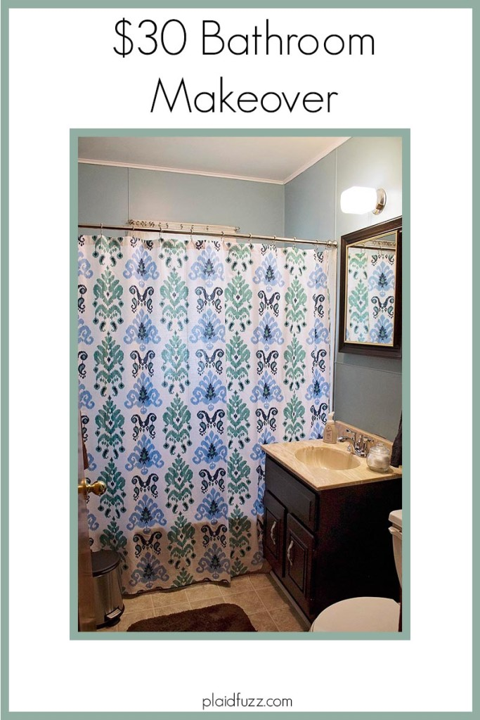 $30 Bathroom Makeover