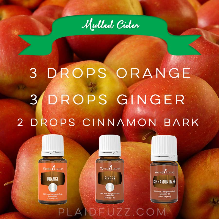 Fall Essential Oil Diffuser Recipes - The House of Plaidfuzz