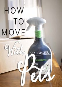 How To Move With Pets